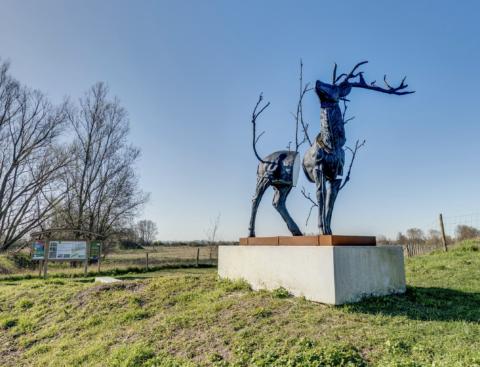 Monument for Cervus Vitalis #2